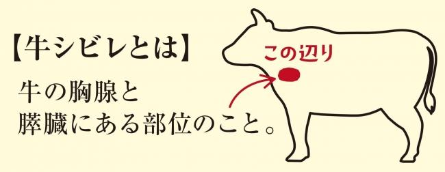 【牛シビレとは】牛の胸腺と膵臓にある部位のこと。