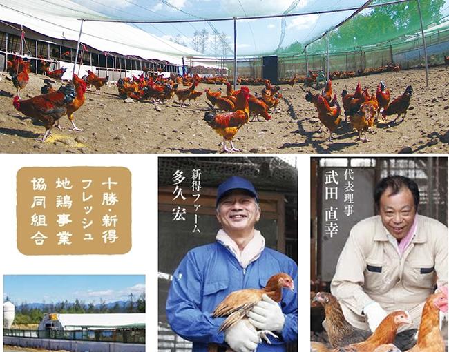 【上】新得地鶏の写真 【下】十勝・新得フレッシュ地鶏事業協同組合 新得ファームの多久 宏さん(左) 代表理事の武田 直幸さん(右)
