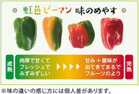 にじいろ味の変化.jpg