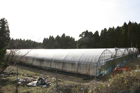 霧島塚田農場